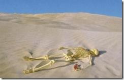 骸骨の絵はがき