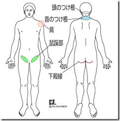 つけ根+人体